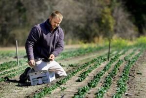 Farmer Steven Walter